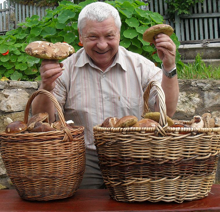 Russian mushrooms